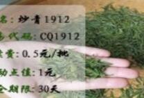 盛通炒青1912交易