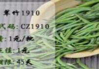 盛通翠竹1910